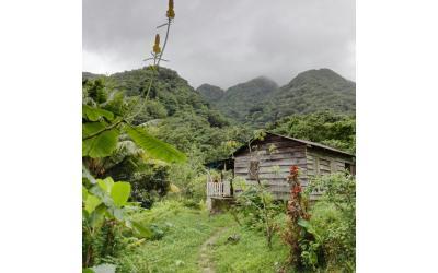 Oxyzen Formation - Guadeloupe